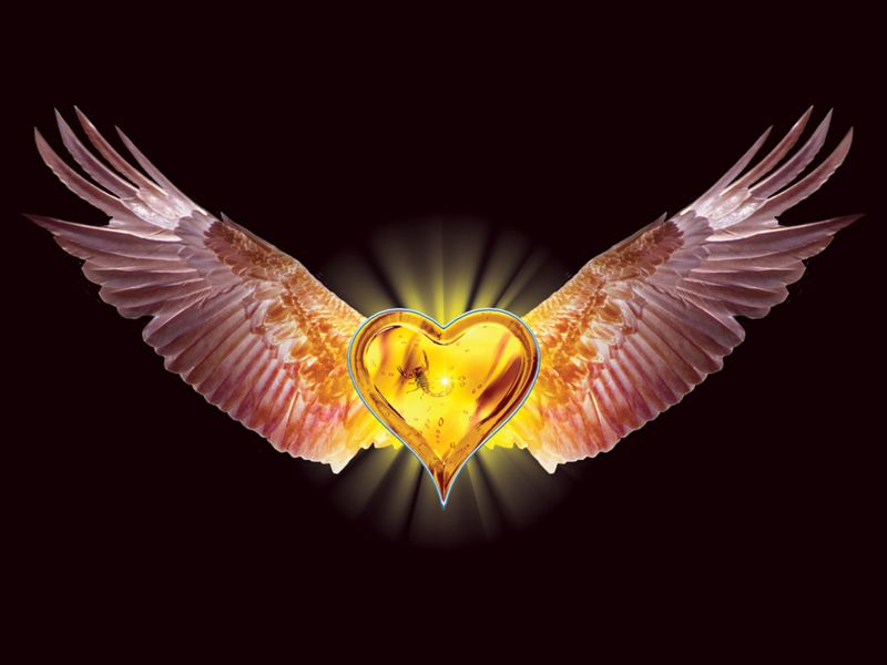 https://i2.wp.com/www.defondos.com/bulkupload/imagenes-amor/Amor/Corazon%20con%20Alas_800.jpg