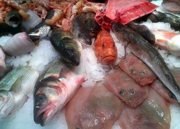 A Cala Rajada: Peix fresc que bota!
