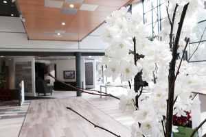 Showroom Van De Graaf Vlaardingen Afb 2