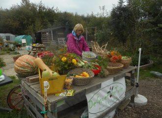 Wat is er te koop Biologische Buurtmoestuin Nieuw-Vennep