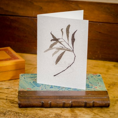Twig - Keepsake Cards by deGroot-Arts, the perfect gift.