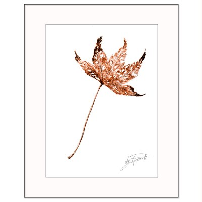 Maple is a fine line pen and ink drawing on paper by deGroot-Arts