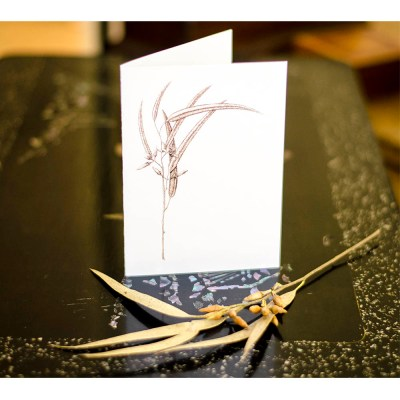Sepia Sapling - Keepsake Cards by deGroot-Arts, the perfect gift.