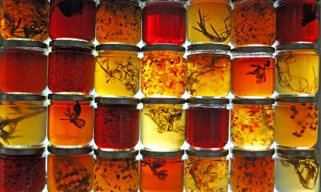 The difference between gelatin and pectin