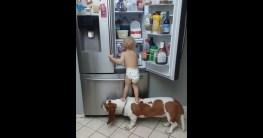 teamwork baby und hund ueberwind