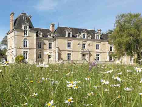 chateau delaguillonniere