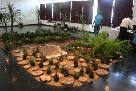 Finalizan prácticas de jardinería
