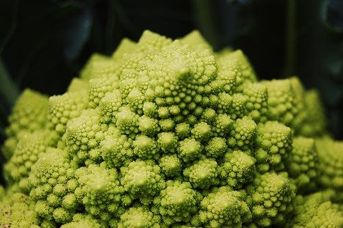 sembrar brocoli
