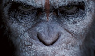 Primer trailer de El Amanecer del Planeta de los Simios