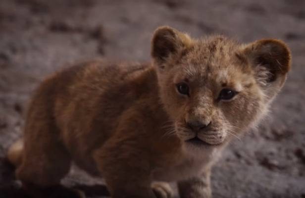 Simba, Timón y Pumba en segundo tráiler del Rey León — Nostalgia pura
