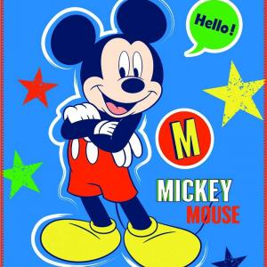 Mickey Mouse Plaid Expressions