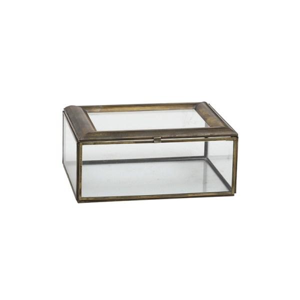 PTMD Glazen doos