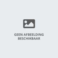ballonnen, decoratie, reclame, ballonen, overijssel, deal, boog, ballonnenboog