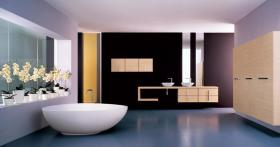 Banyo-Dekorasyonu-2013