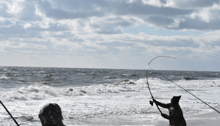Nice bend loading a rod to cast into the wind.