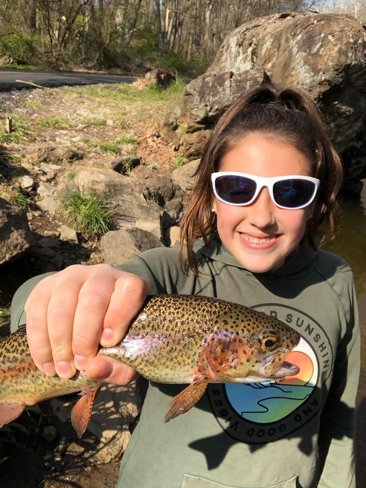 trout, stocked trout, farmed trout, brandywine creek, delaware, new castle county