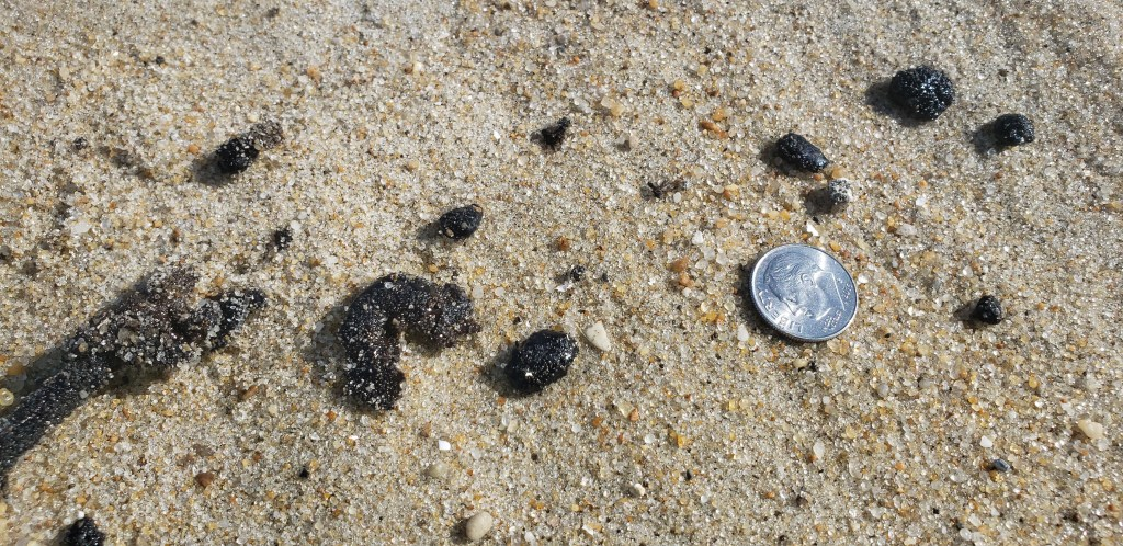 oil spill, delaware beaches, tar ball, tar blob, glob, oil slick, delaware surf fishing, sussex county, delaware state parks, lewes, bethany, dewey, rehoboth, dnrec, coast guard, tri state bird rescue, merr