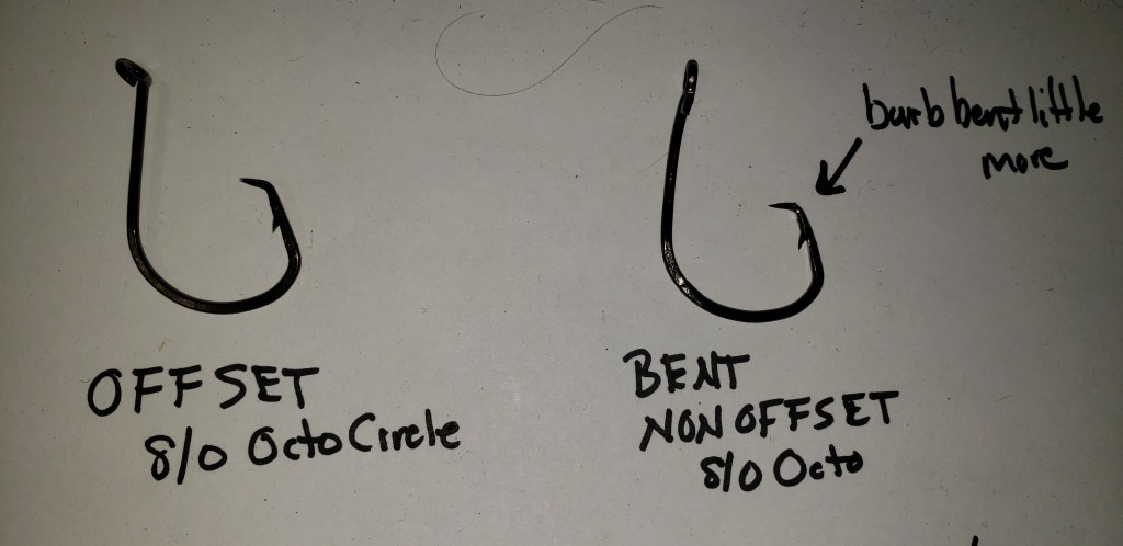 offset circle hooks, striped bass regulations, delaware surf fishing, bending circle hooks