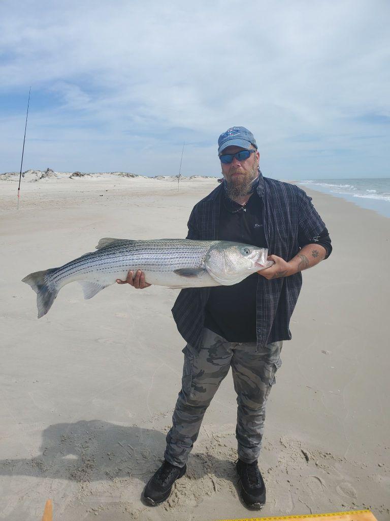 assateague, national seashore park, maryland, striped bass, rockfish, delaware surf fishing
