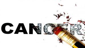 Inmunoterapia contra el cáncer elimina tumores en ratones. Tal vez la mejor noticia de este 2018.