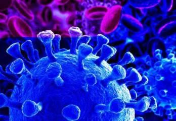 DEL CINE AL HOSPITAL COVID-19: Grupos sanguíneos y predisposición genética.