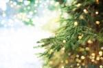 Merry Christmas to Those Celebrating!