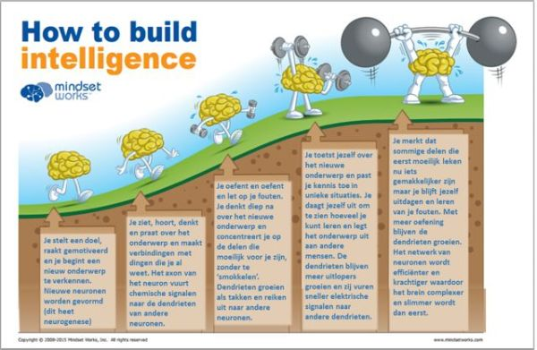 How to build intelligence