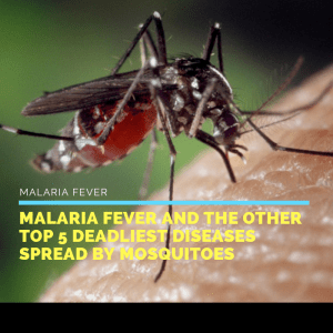 dengue fever,dengue symptoms in child,malaria fever,delhi blogger,goodknight