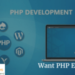 Want PHP Education? Here are Various Training Options