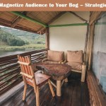 Magnetize Audience to Your Bog – Strategies
