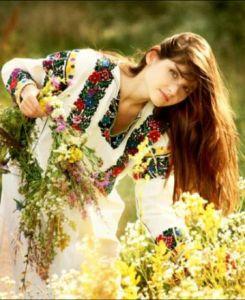 sanziene-flori-vindecatoare