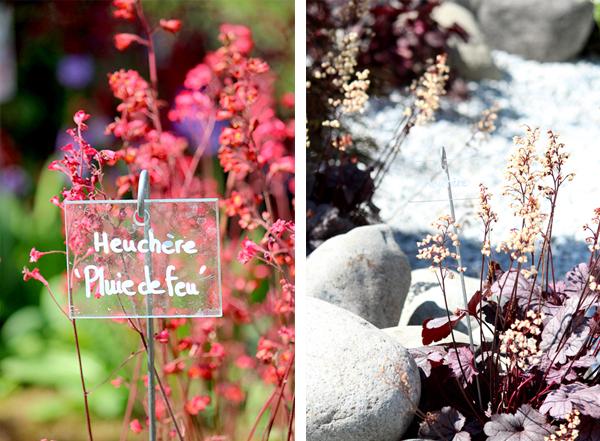 journees-des-plantes24