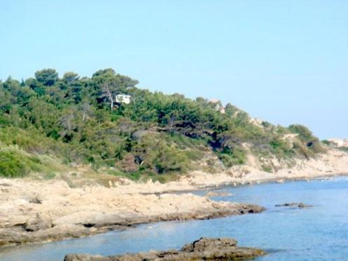 saint-tropez-2010-9