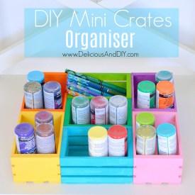 DIY Mini Crates Organizer