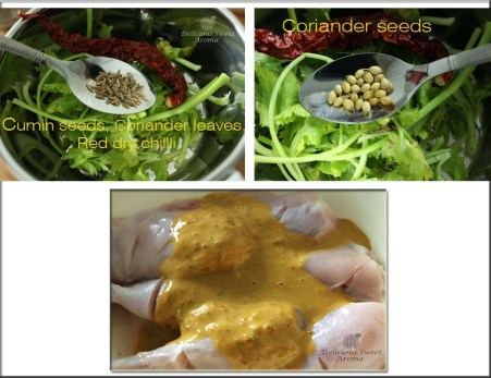 Marinated spices for chicken | Hungry?! That's what I made!