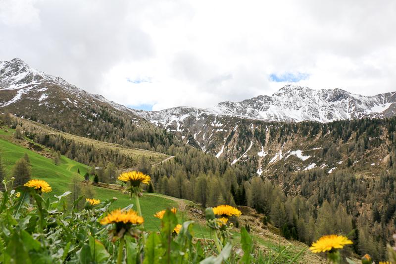 Almenweg Panorama