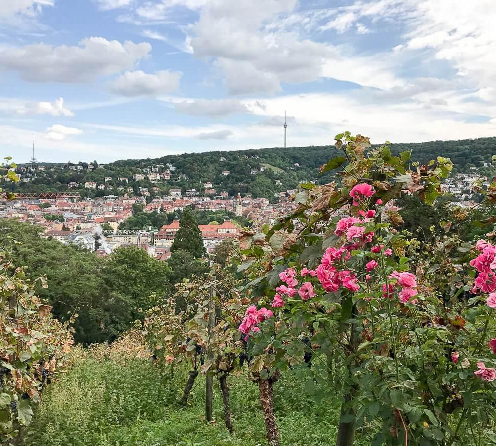 Meine Genuss-Hotspots in und um Stuttgart (1/3)