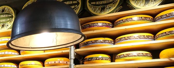 Gouda Käseräder in der Markthalle Rotterdam