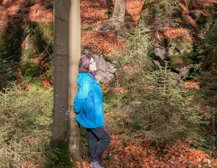 Waldbade, Bayerischer Wald