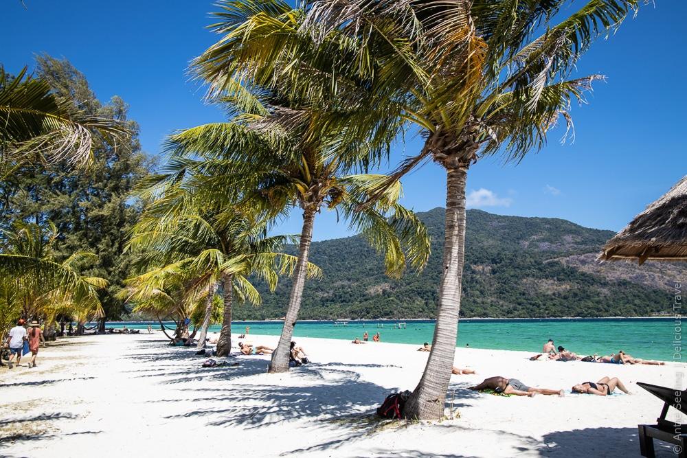 Relaxen unter Kokospalmen