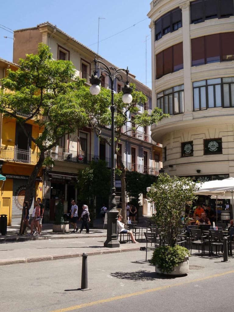Orangenbäume in den Straßen Valencias