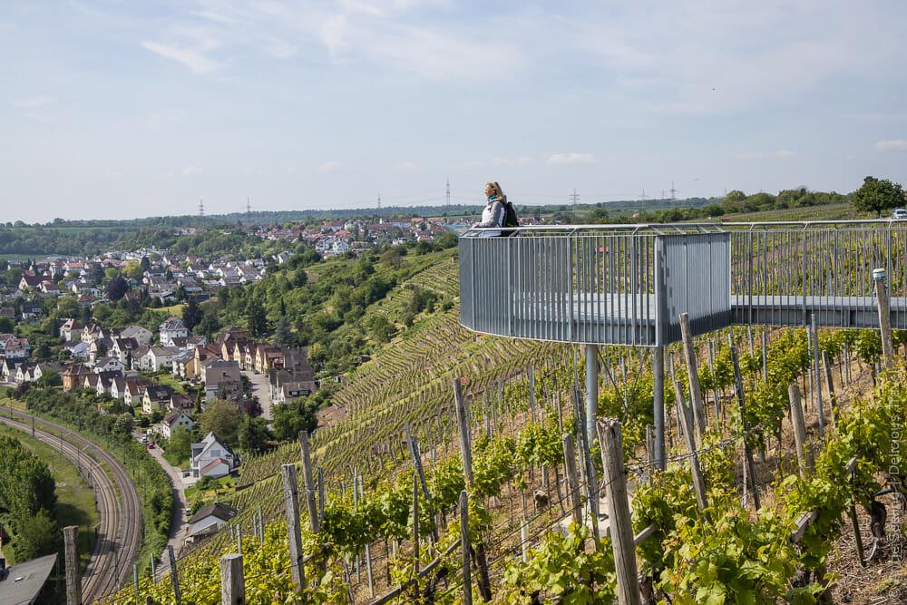 Weinkanzel in den Besigheimer Weinbergen