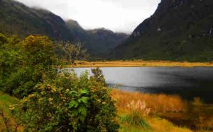 Equateur-parc-national-cajas