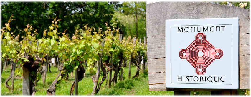 60 ans de l'Appellation du vignoble Saint Mont, AOC