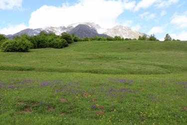 montenegro reisetipp nationalpark durmitor