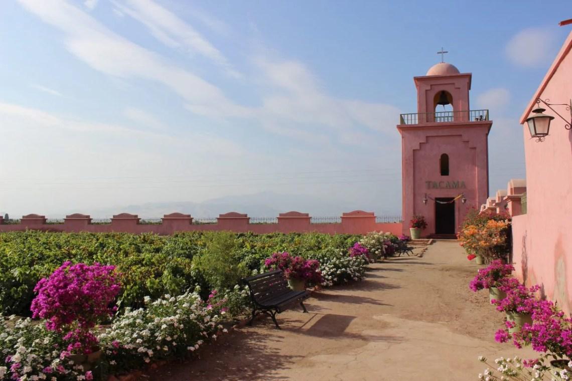 Tacama Weingut Peru