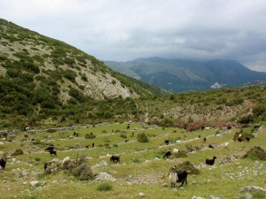 wanderung-albanien