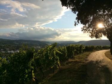Spaziergang auf dem Petrisberg in Trier
