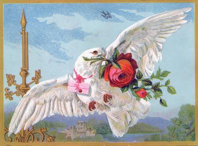Dove-Roses-Valentine