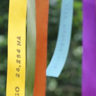 True Colours0106